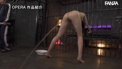 ハードアナル責め!【V(ヴイ)×オペラ】コラボ超絶拷問第2弾サンプル18