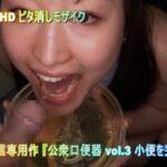 男のオシッコを飲む女3作目【公衆口便器】小便専用人間便器女サンプル4